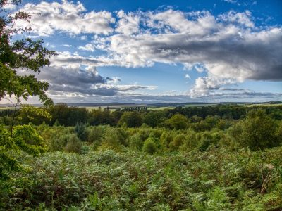 View from Codger Fort, Rothley